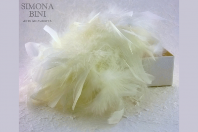 Scatola con piume – Box with feathers