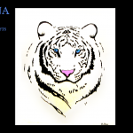 Dipinto su vetro Tigre bianca – Painted on glass White tiger